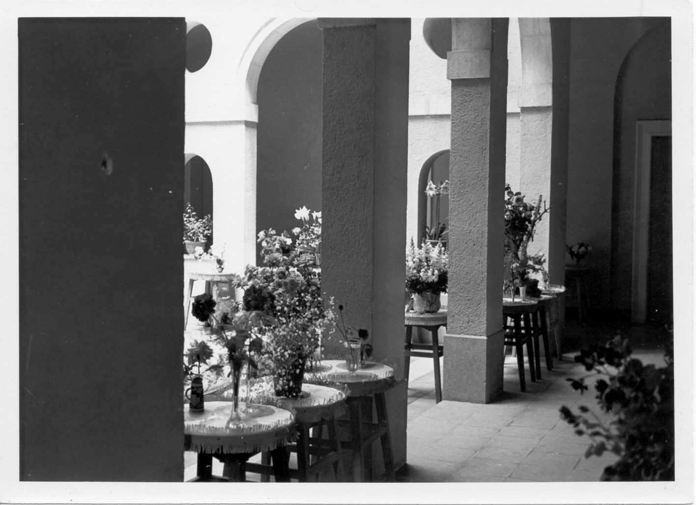 Concurs exposició de plantes i flors al pati de l'Ajuntament de Sant Feliu de Guíxols als anys 60. AMSFG. Col·lecció Municipal d'Imatges (Autor desconegut)